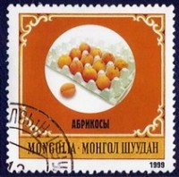 Mongol Shuudan Abrikosy