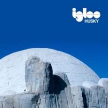 Igloo Husky