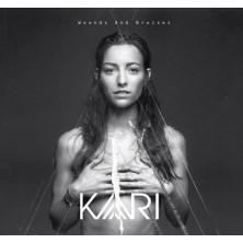 Wounds And Bruises Kari Amirian