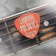 Legendy polskiej gitary Sampler