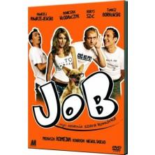 Job, oder die letzte schwarze Zelle Konrad Niewolski