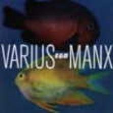 Ego Varius Manx