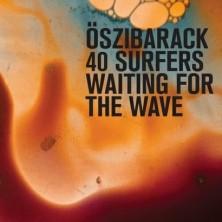 40 Surfers Waiting For The Wave  Oszibarack