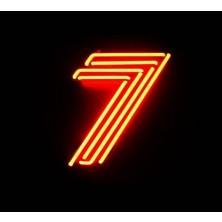 Voo Voo 7 Voo Voo