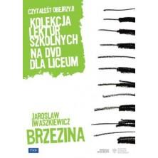Brzezina Andrzej Wajda